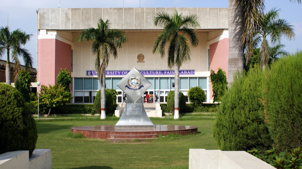 University of Agriculture Faislabad Undergraduate Admission